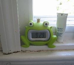 froggyfroggy