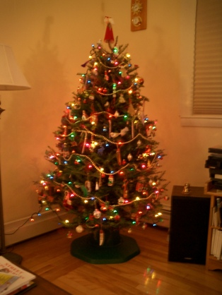 our pretty little tree